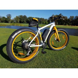 Электровелосипед GIANT Momentum Fat Bike